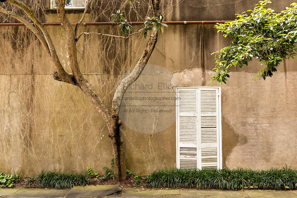 Shutters on a weathered wall in historic Charleston, SC.