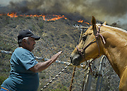 June 20, 2016 - Duarte, California, U.S. - SAMUEL PADILLA calms a horse he evacuated from the ranch he lives on in Fish Canyon as the Fish Fire burns above Duarte and Los Angeles County. The fire was 1,400 acres at 2:50pm.<br /> ©Exclusivepix Media
