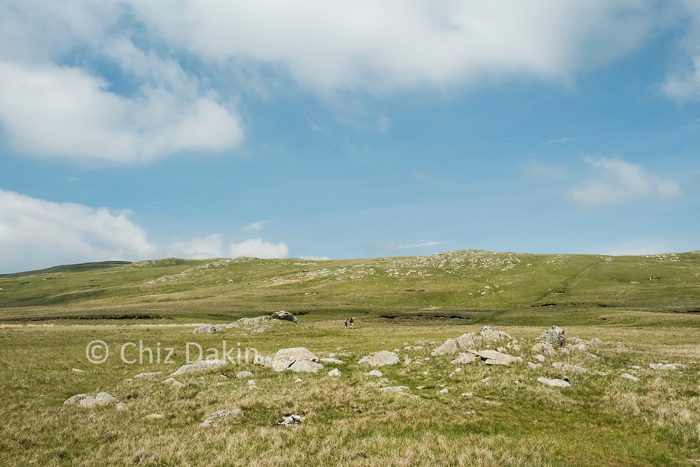 Outcrops and bogs on Greenup edge