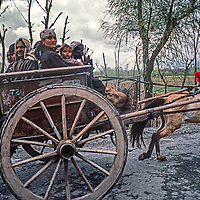 A family rides a horse cart to market in Srinigar, Kashmir, India.