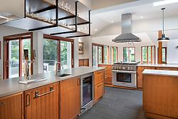 3122 Newark House Kitchen, Great Room, pool, Exterior patio , modern kitchen VA2_229_899