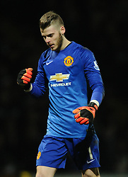 Manchester United's David De Gea celebrates their first goal of the game  - Photo mandatory by-line: Joe meredith/JMP - Mobile: 07966 386802 - 04/01/2015 - SPORT - football - Yeovil - Huish Park - Yeovil Town v Manchester United - FA Cup - Third Round