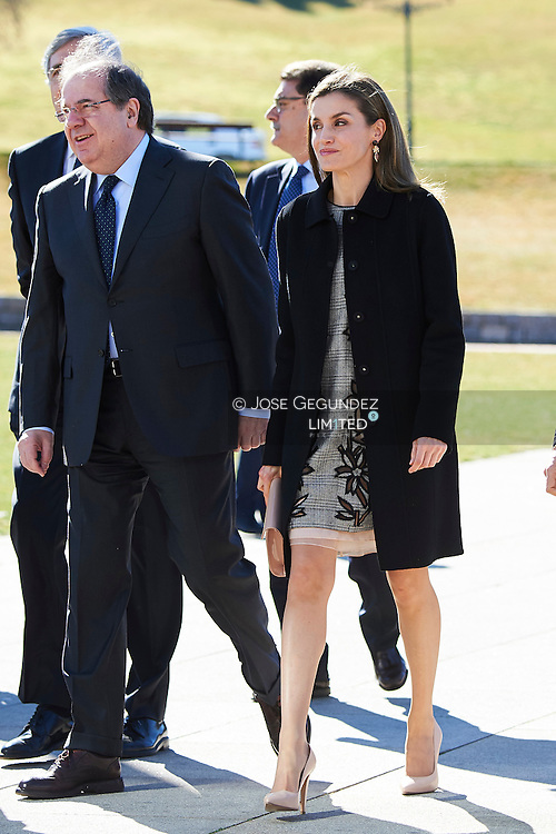 Queen Letizia of Spain attended to Closing of the International Congress 'Women and Disability. We crossed borders' at Exhibition and Congress Center 'Lienzo Norte' on March 1, 2017 in Avila, Spain