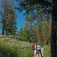 Hikers ascend the Ouzel Falls trail in the Madison Range near Big Sky, Montana