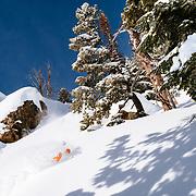 Caite Zeliff skiing powder inbounds at JHMR.