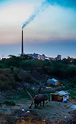 16th May 2014, Yamuna River, New Delhi, India. A mahout's camp at dusk with the Rajghat coal-fired power station in the background, New Delhi, India on the 16th May 2014<br /> <br /> Elephant handlers (Mahouts) eke out a living in makeshift camps on the banks of the Yamuna River in New Delhi. They survive on a small retainer paid by the elephant owners and by giving rides to passers by. The owners keep all the money from hiring the animals out for religious festivals, events and weddings, they also are involved in the illegal trade of captive elephants. The living conditions and treatment of elephants kept in cities in North India is extremely harsh, the handlers use the banned 'ankush' or bullhook to control the animals through daily beatings, the animals have no proper shelters are forced to walk on burning hot tarmac and stand for hours with their feet chained together. <br /> <br /> PHOTOGRAPH BY AND COPYRIGHT OF SIMON DE TREY-WHITE<br /> + 91 98103 99809<br /> email: simon@simondetreywhite.com photographer in delhi