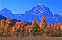 12,605 ft. Mount Moran during the autumn season.  Grand Teton National Park.  Wyoming, USA