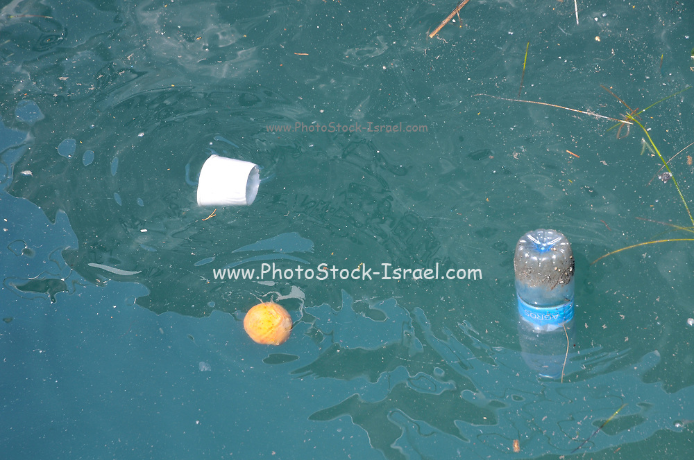 polluted water in the Limassol Marina and port, Cyprus