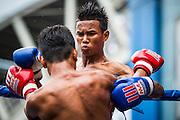 28 JULY 2013 - BANGKOK, THAILAND:  Boxing action during the ASEAN Muay Thai Championship at MBK shopping center in Bangkok.      PHOTO BY JACK KURTZ