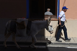 March 29, 2019 - Villaroya De La Sierra, Zaragoza, Spain - Hermeregildo Hernando is seen walking with a donkey Margarita during the protest..Raimundo Fernandez, mayor of the small village of Torrubia de Soria, is marching with his donkey 'Margarita' from his village to Calatayud 60 kilometres distance, to demand Spanish government measures against depopulation in the region.  Soria's province is one of the Europe's largest desert in terms of population with just 8.8 inhabitants per sq. km. (Credit Image: © Jorge Sanz/SOPA Images via ZUMA Wire)