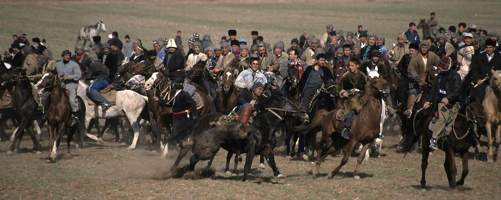bushkashi horsegame