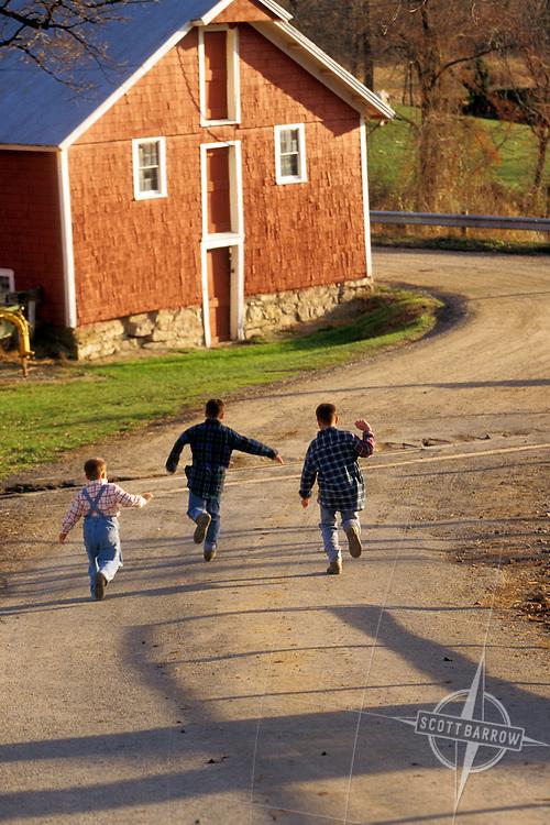 Boys skipping in road