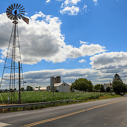 Ephrata, PA, USA- June 26, 2012: A Lancaster County farm with cornfield and windmill on a sunny day in early summer.