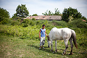 """Young Roma man with a white horse named """"Gina"""" in the Roma area of Frumusani."""