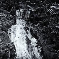 Madison Falls, Elwha River, ONP, WA, USA<br />edited 5/20/18<br /> converted to B&W 6/03/18