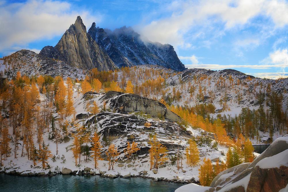 Mountain Larches at Prusik Peak