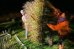 A mobilizacao de cerca de 2 mil mulheres da Via Campesina marcou o Dia Internacional da Mulher com uma ocupacao na madrugada desta quarta-feira do hortoflorestal da Aracruz Celulose, em Barra do Ribeiro (RS). A mobilizacao tem o objetivo de denunciar as consequencias sociais e ambientais do avanço da invasao do deserto verde criado pelo monocultivo de eucaliptos. A Fazenda Barba Negra concentra a principal unidade de producao de mudas de eucalipto e pinus da Aracruz, tendo inclusive um laboratorio de clonagem de mudas. FOTO: Jefferson Bernardes/Preview.com