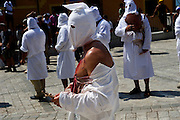 """Every seven years in August  in a small village named Guardia Sanframondi , a one-week long catholic procession, the """"Riti Settennali"""" takes place. <br /> From Monday to Friday the flagellant walk in the street of the medieval village striking their back with small strips of metal to honour the Assumption of the Virgin Mary. The last day, Sunday, the Virgin Mary from the main church is carried around the village and venerated by the """"Battenti"""". The """"Battenti"""" are men that decide to commemorate the Assumption of the Virgin Mary beating their own chest with a cylindrical peace of cork pierced with needles (between 25 and 45)."""