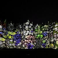 Glow Wild;<br />Wakehurst Place;<br />Winter Light display;<br />6th December 2020.<br /><br />© Pete Jones<br />pete@pjproductions.co.uk