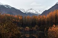 Autumn colors reflect in a tarn near Valdez, Alaska