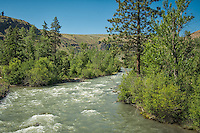The mighty Tieton River as it flows out out the Cascade Mountains and through White Pass on it's way to Naches, Washington.