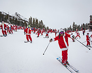 Hundreds of skiers and riders in Santa suits ski down the slopes of Crested Butte Mountain Resort, after a priming at the Ice Bar (Uley's Cabin), in an effort to break the world's record (again) for the most Santas on skis. The Ice Bar also served up the first of five drinks offered in the Santa Pub Crawl.