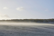 Rondvliegend zand tijdens storm op het strand. |  Sand flying around during a storm on the beach.