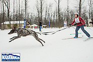 Skijor, Fatbike, Snowshoe