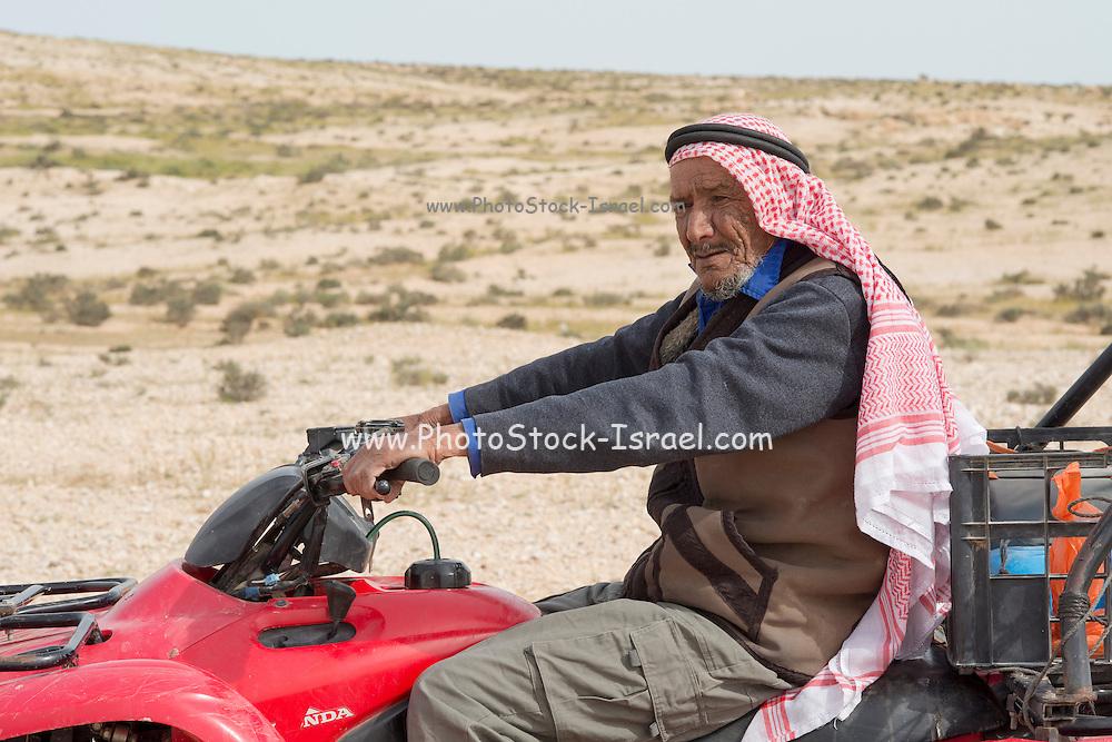 Israel, Negev Desert, Bedouin shepherd on an all terrain vehicle
