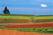 farmer's fields in spring<br /> Margate<br /> Prince Edward Island<br /> Canada