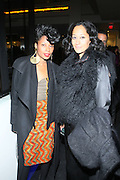 """Fatima Robinson and Tracey Ellis Ross at """" The Obama That One: A Pre-Inagural Gala Celebrating the Victory of President-Elect Obama celebration held at The Newseum in Washington, DC on January 18, 2009  .."""