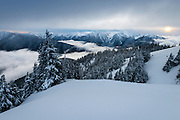 The view from Hurricane Ridge in Olympic National Park, looking toward Mt. Olympus and the Bailey Range.