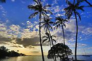 Puako, Kohala Coast, Big Island of Hawaii
