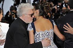 May 17, 2019 - Cannes, France, France - 72nd Cannes Film Festival 2019, Red carpet film Dolor y Gloria .Pictured Pedro Almodovar Penelope Cruz (Credit Image: © Camilla Morandi/IPA via ZUMA Press)