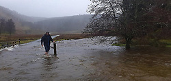 © Licensed to London News Pictures. 20/01/2021. Abergwesyn, Powys, Wales, UK.  A man wades through floodwater in Abergwesyn Valley, Powys, Wales, UK. Photo credit: Chris Truswell/GLW/LNP