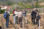 vineyard a visiting group clos st louis fixin cote de nuits burgundy france