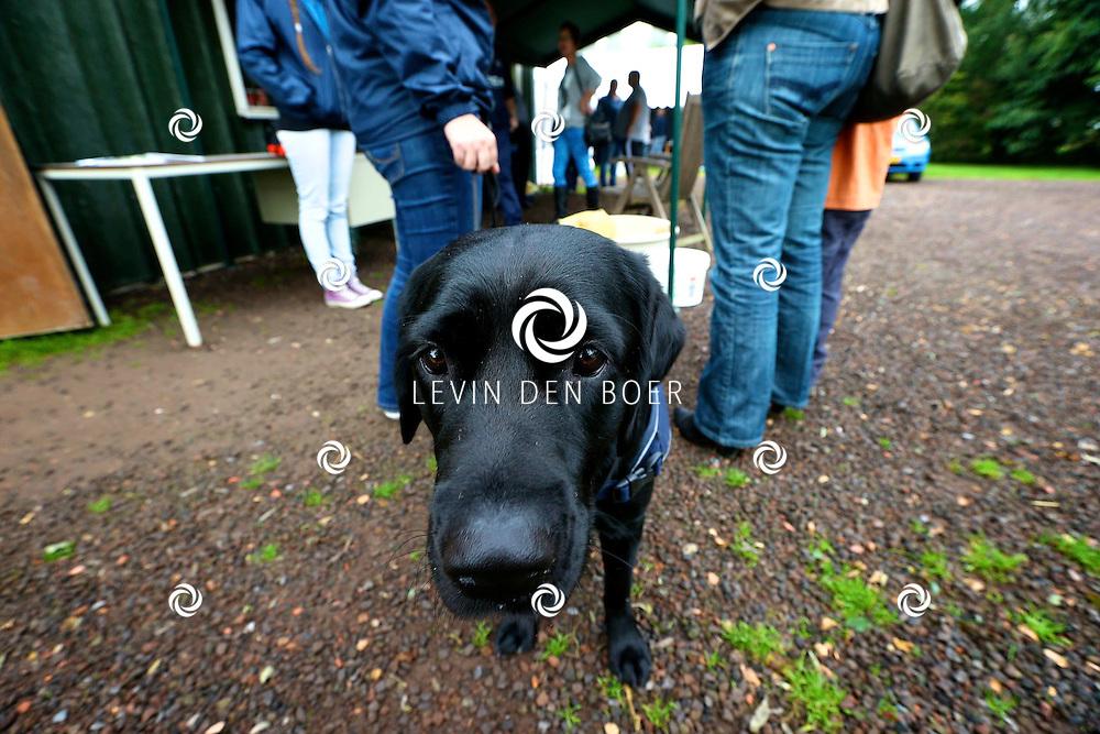 BRUCHEM - Het dierenasiel hield weer hun jaarlijkse opendag. Bezoekers kunnen met hun dier op de foto of een rondleiding door het asiel krijgen. FOTO LEVIN DEN BOER- PERSFOTO.NU