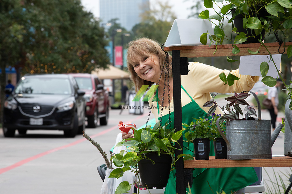 THE WOODLANDS, TX – The Howard Hughes Corporation will host its 31st annual  The Woodlands®  Wildflower Festival Art Contest on Saturday, October 20
