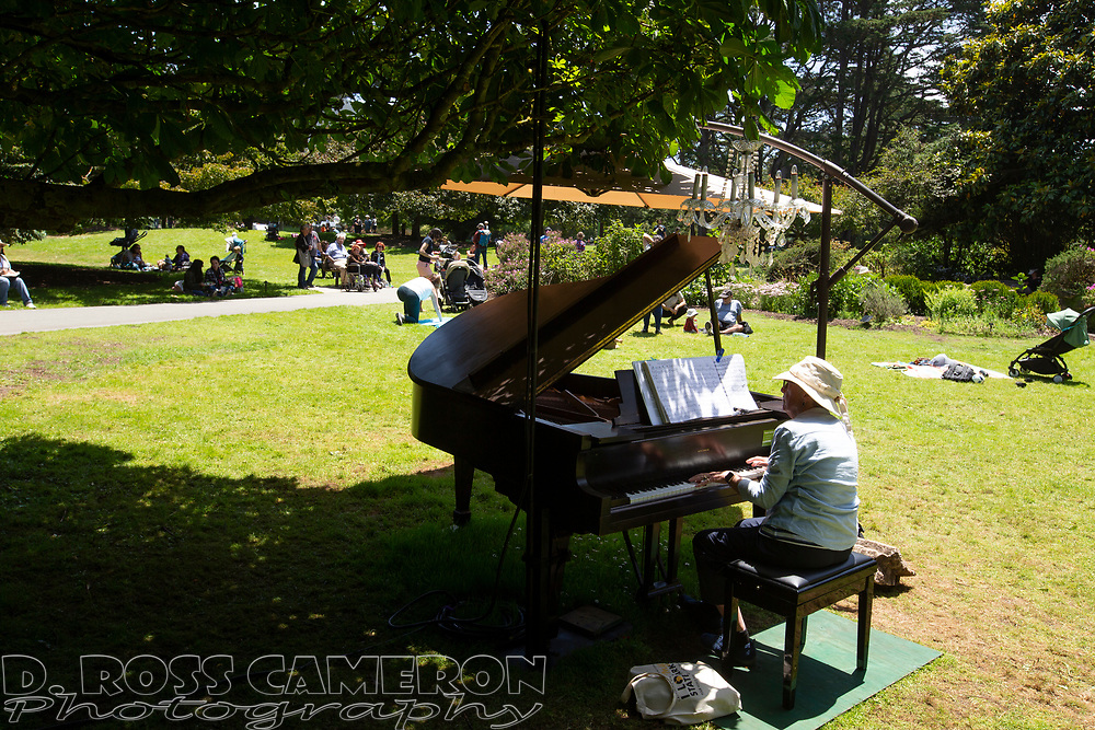 A scene from the fifth annual Flower Piano exhibition at the San Francisco Botanical Garden in Golden Gate Park, Friday, July 19, 2019 in San Francisco. The exhibition continues through Monday. (Photo by D. Ross Cameron)