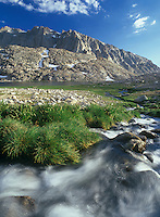 Mountain stream flows from the westside of Mt. Whitney to Guitar Lake, Sierra Nevada CA