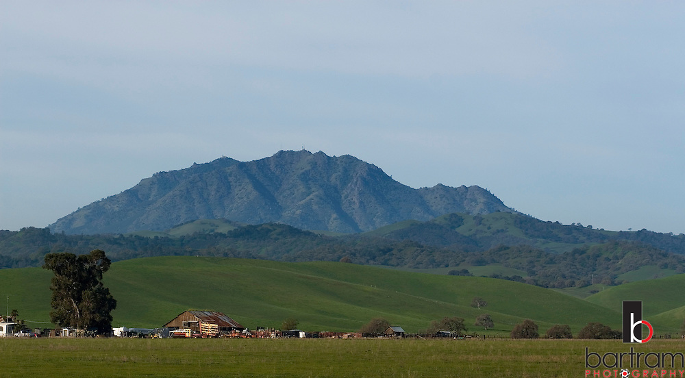 Mount Diablo is seen beyond the rolling green hills of Antioch, California on Friday, March 7, 2008. (Photo by Kevin Bartram)