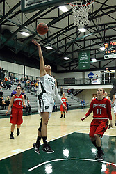 10 January 2015:  Kasey Reaber during an NCAA women's division 3 CCIW basketball game between the Carthage Reds and the Illinois Wesleyan Titans in Shirk Center, Bloomington IL