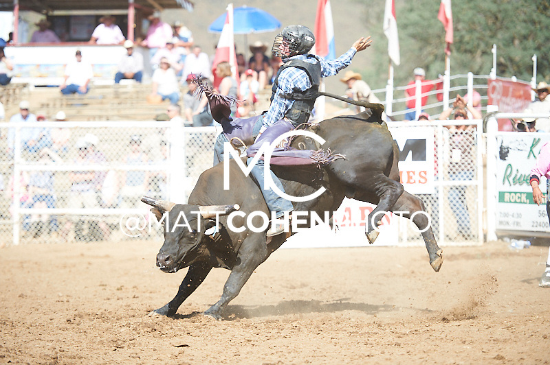 Bull rider Lane Selz of Bakersfiled, CA rides Ram Tough for 80 points and the win at the Woodlake Lions Rodeo.<br /> <br /> <br /> UNEDITED LOW-RES PREVIEW<br /> <br /> <br /> File shown may be an unedited low resolution version used as a proof only. All prints are 100% guaranteed for quality. Sizes 8x10+ come with a version for personal social media. I am currently not selling downloads for commercial/brand use.