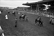 29/06/1963<br /> 06/29/1963<br /> 29 June 1963<br /> Irish Sweeps Derby at the Curragh Racecourse, Co. Kildare. Image shows the runners on the track before the race.