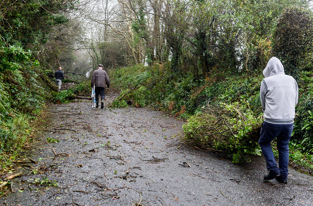 Local people clear fallen trees from the road near Kinsale hospital during Storm Ophelia.<br /> Picture. John Allen