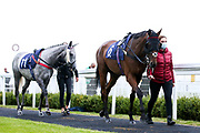 Earthly ridden by Joey Haynes and trained by Bernard Llewellyn and Shadow's Girl ridden by Gavin Ashton trained by Bernard Llewellyn - Mandatory by-line: Robbie Stephenson/JMP - 18/07/2020 - HORSE RACING- Bath Racecourse - Bath, England - Bath Races 18/07/20
