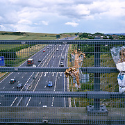 High angle view of highway with vehicle