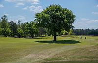TILBURG -   hole 9 De Blaak. Century hole, boom op de fairway.  PRISE D'EAU GOLF, golfbaan.  COPYRIGHT KOEN SUYK
