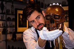 "London, March 4th 2015. Sotheby's in London hosts ""one of the most extraordinary collections of our time"", an anonymous collector's vast assembly of fine art pieces, including skulls, bear sculptures, paintings and installations. PICTURED: Sotheby's technician examines a theatrical prop skull made of walnut and bamboo, which is expected to fetch £800 - £1,000 at auction."