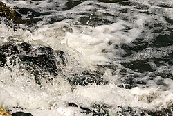 Flowing water with rapids and foam